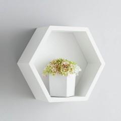 Shelf ACE